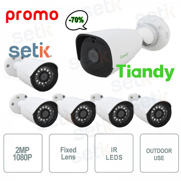 Promo KIT 5 Cameras IP Cam + TC-NC214 Tiandy
