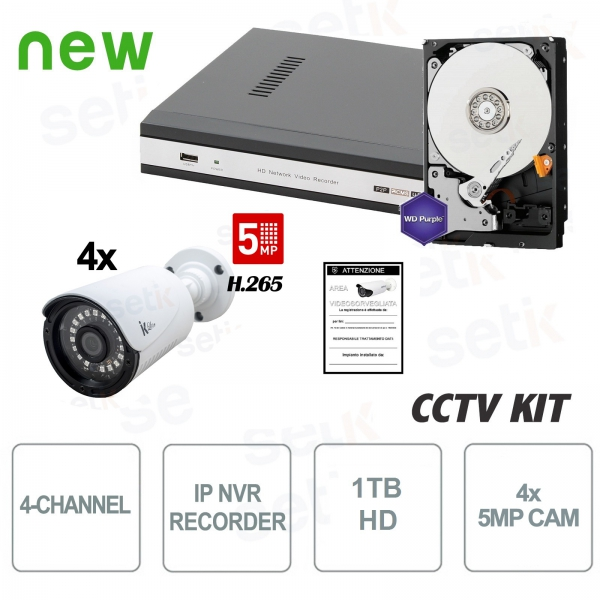 4-channel video surveillance kit IP 5 MP 4 Cam HD1TB - Setik
