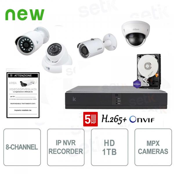 8-channel IP video surveillance kit with Megapixel professional cameras - Setik