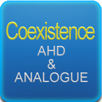 Coexistence AHD & ANALOGUE