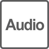 Ingresso / Uscita Audio