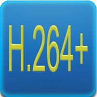 Questo DVR supporta la video compressione H264+ dual-stream