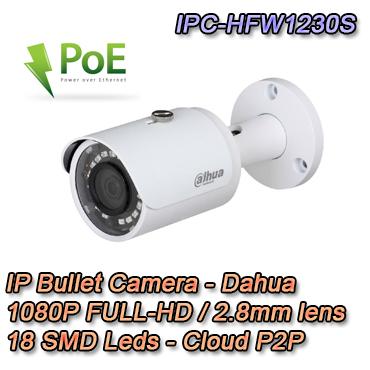 Telecamera IP Bullet 2Mpx